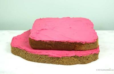 Raw Turkey Cake Initial Layers